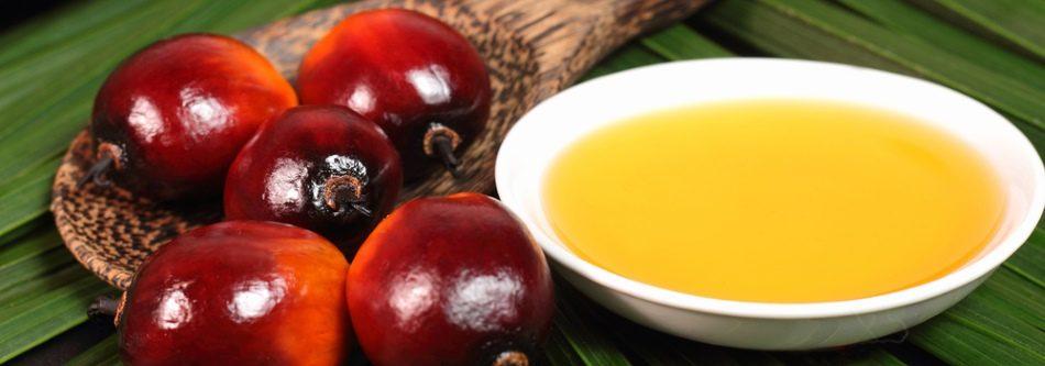 Olej palmowy RSPO